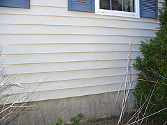 Click here for a larger view of this mold/mildew removal image